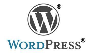 非插件实现 WordPress 的彩色标签云 WordPress 第1张